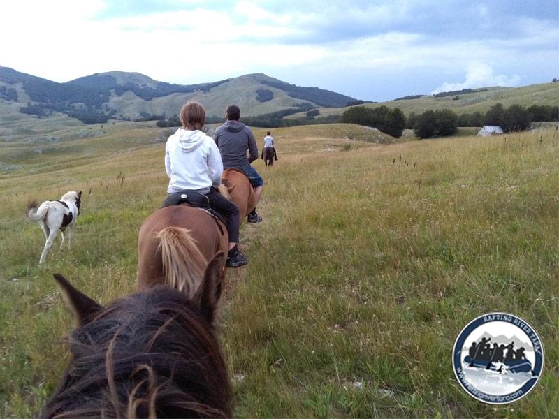 Jahanje konja jednodnevni izlet