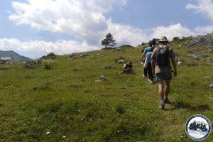 Planinarenje-Tara